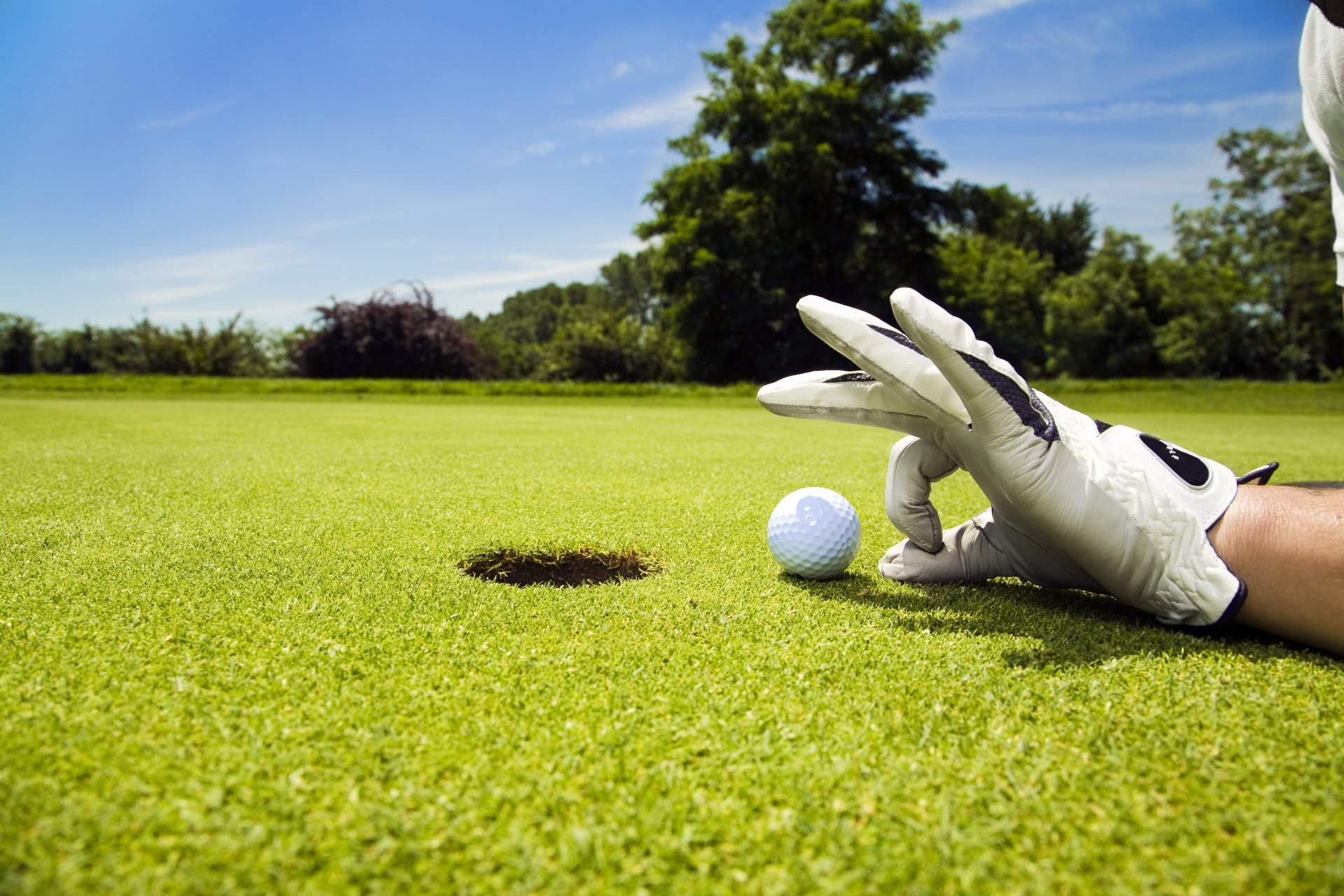La ardilla del golf
